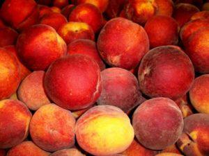 Dining_Peach_D